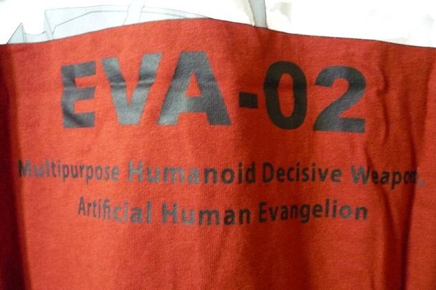eva-t-av-ask06.jpg
