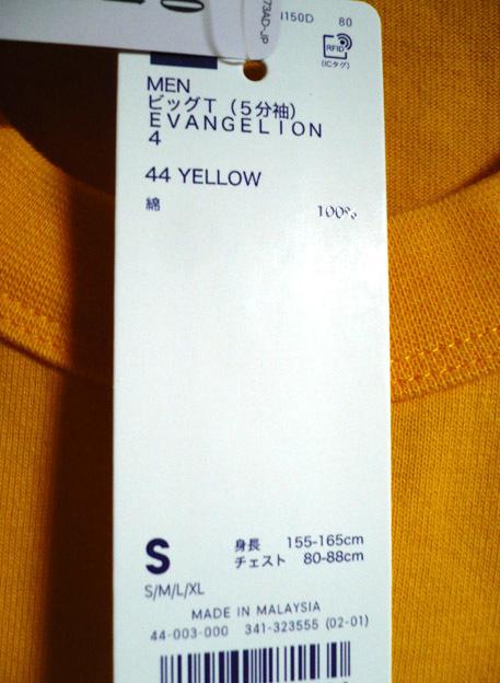 eva-t-ye12.jpg
