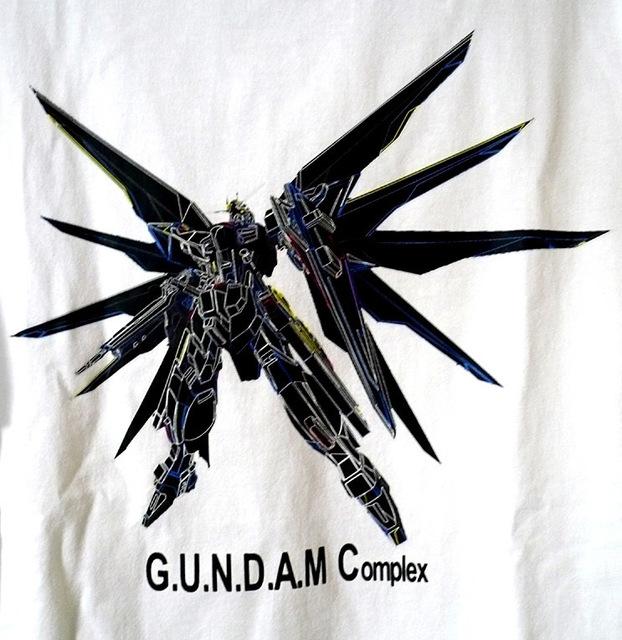 gundam-gu-sf-w07.jpg